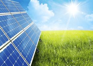 Climate Leadership Award : Proximus dans le top green mondial !
