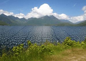 EMC – Data Lake, toujours plus prédictif