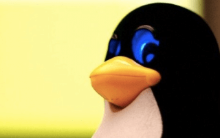 Linux, 25 ans. «Un hobby, rien d'officiel», selon Linus Torvalds