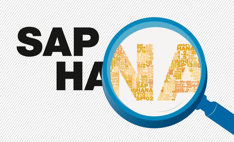 SAP HANA : plus que l'in-memory, c'est une vision
