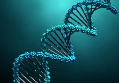 Cybersécurité, avant tout une affaire d'ADN