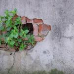 De la reprise après sinistre à la résilience